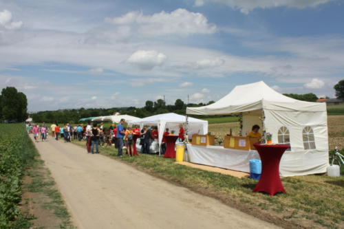 2. Erdbeerfest - 2012