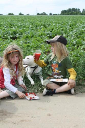 2 Erdbeerfest - 2012 - Bild 12