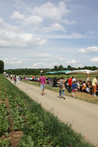 2 Erdbeerfest - 2012 - Bild 16