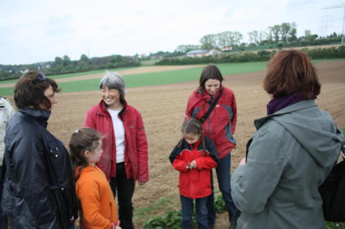 Erdbeersetzen 2010 - Bild 3