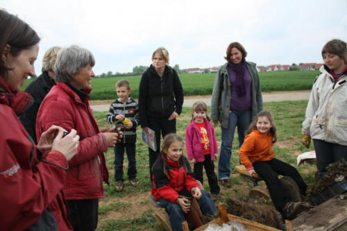 Erdbeersetzen 2010 - Bild 5