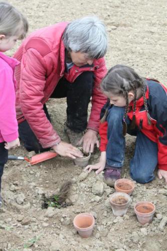 Erdbeersetzen 2010 - Bild 9